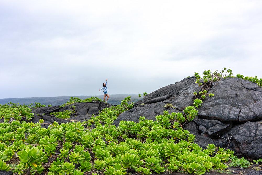 So many lush plants thriving out of the volcanic rock!