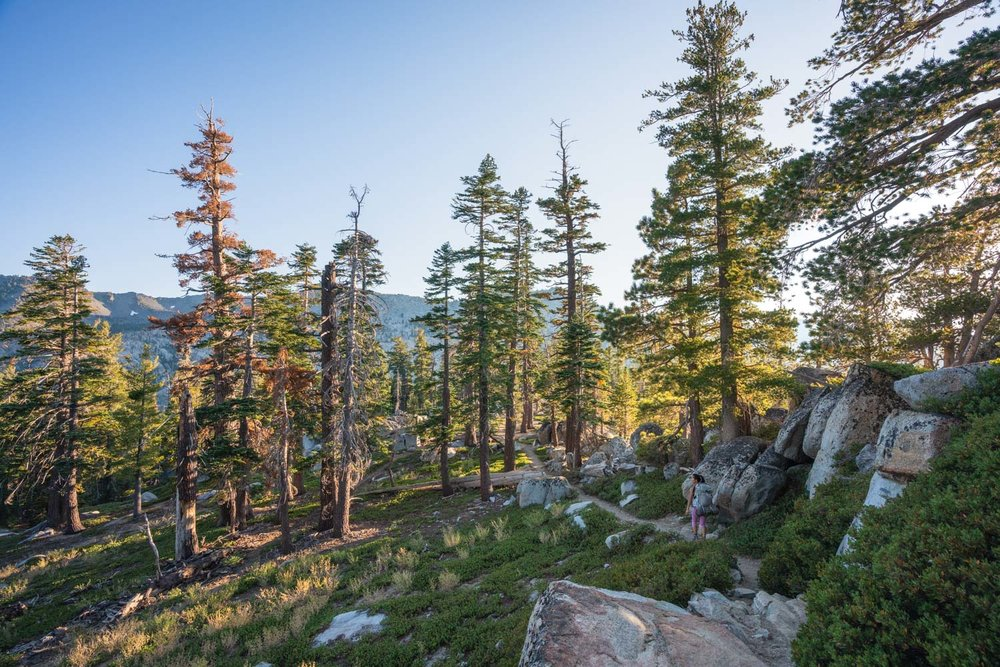 Overnight backpacking trips northern california