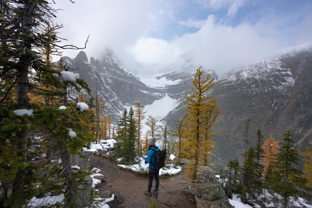 Best larch hikes in Banff September