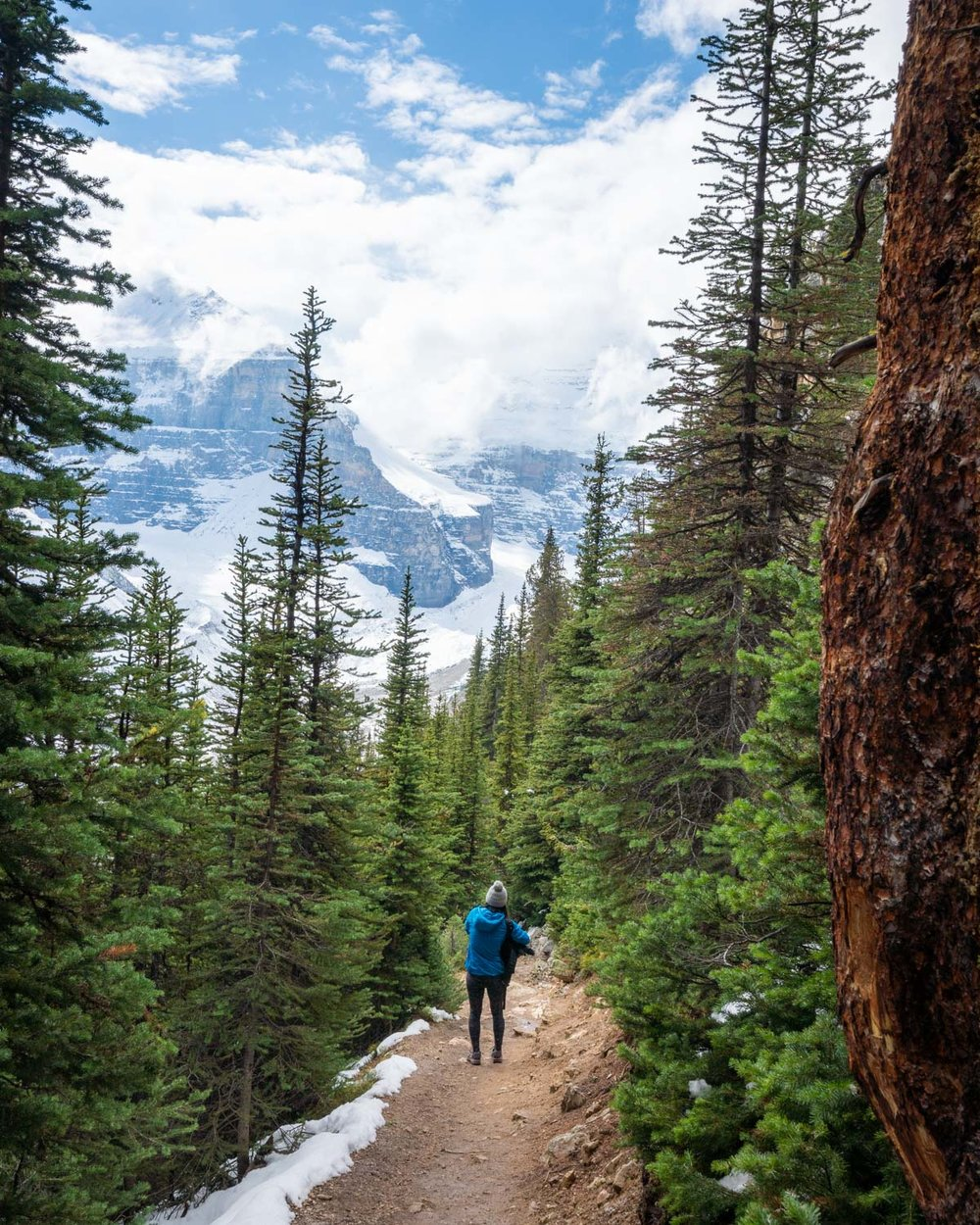 Best hikes in Banff National Park