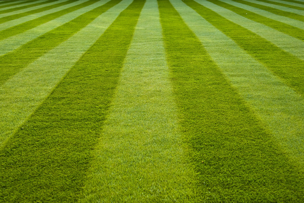 Your Arlington Lawn & Landscape Company   Award-winning Lawn and Landscape Services