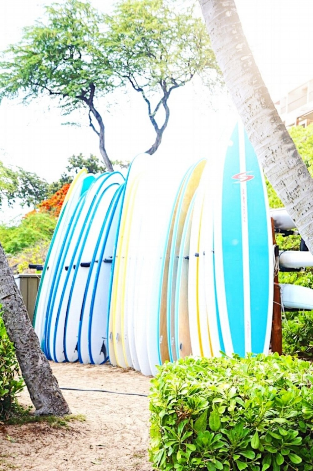 Big Island Travel Guide Surf