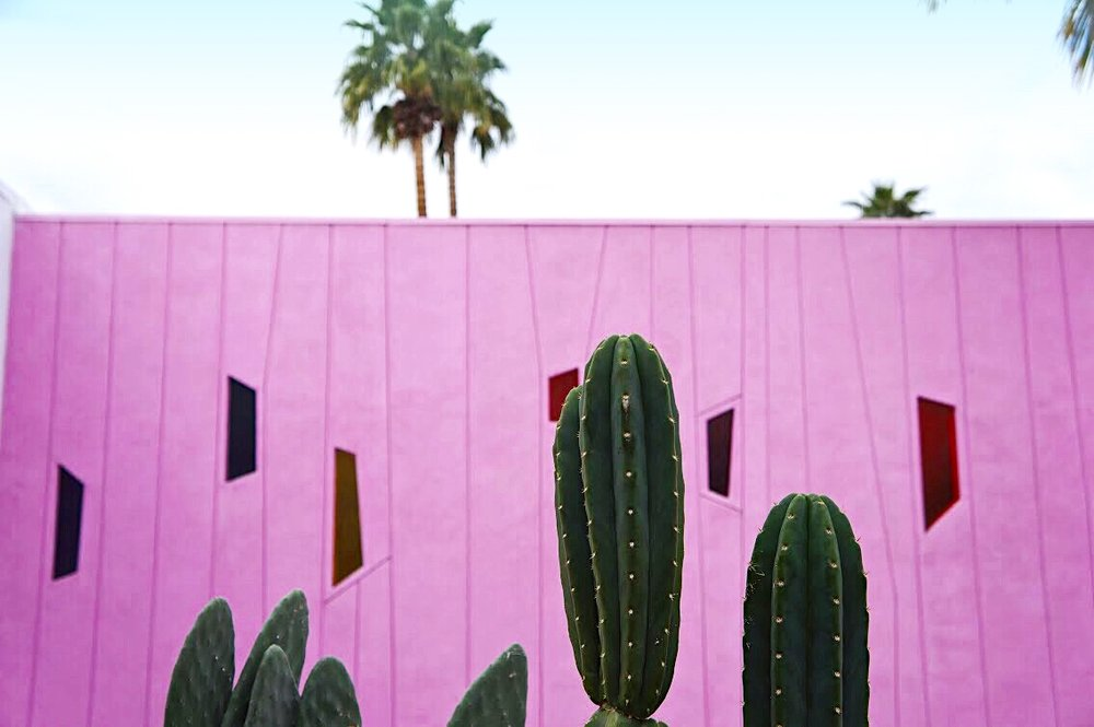 Saguaro's famous pink wall, as seen from the new Sago Terrace. Image Credit:  STRUKTR Studios