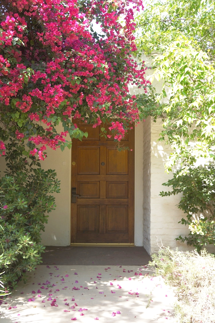 Park Palm Springs Door