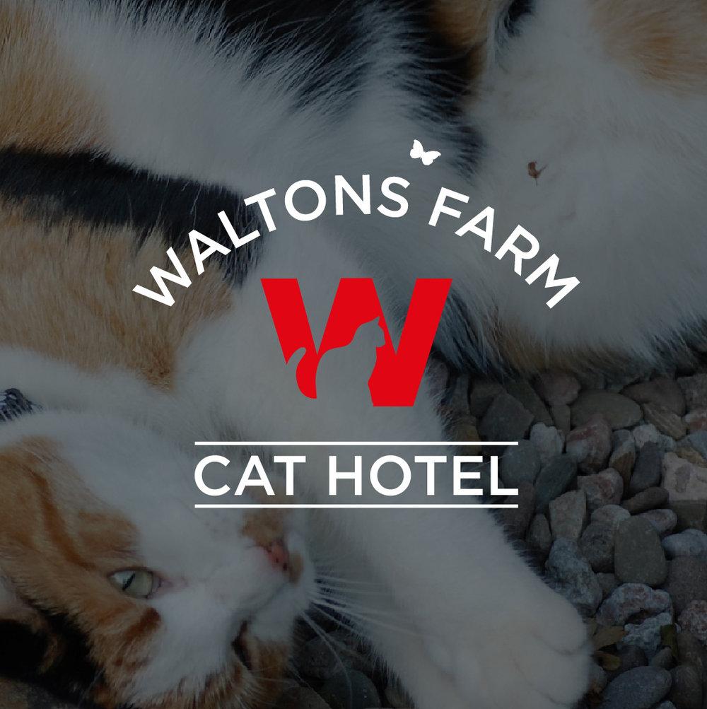 LMPP Cat Hotel Image logo-100.jpg