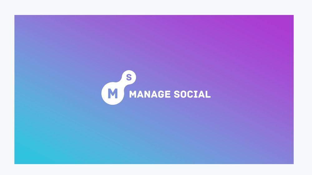 Manage Social 5.jpg