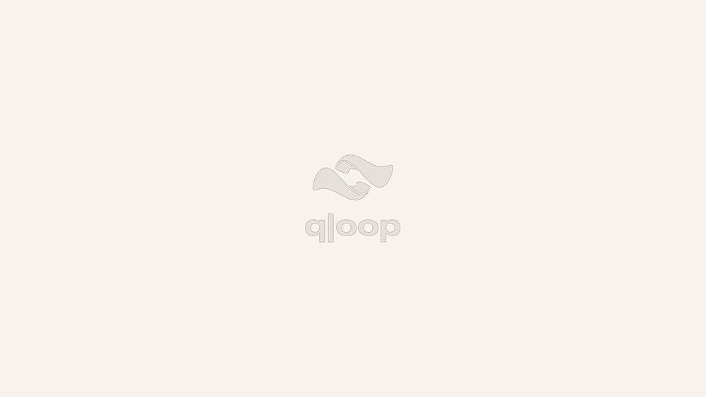qloop 1.jpg