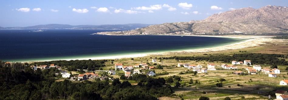 Vineyard landscape in Rias Baixas