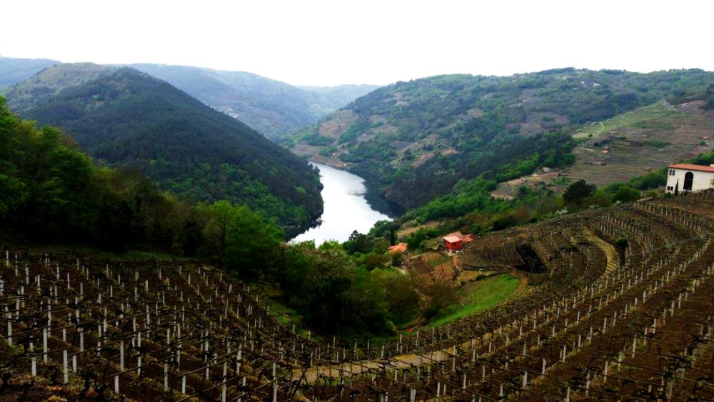 galicia2 blog.png