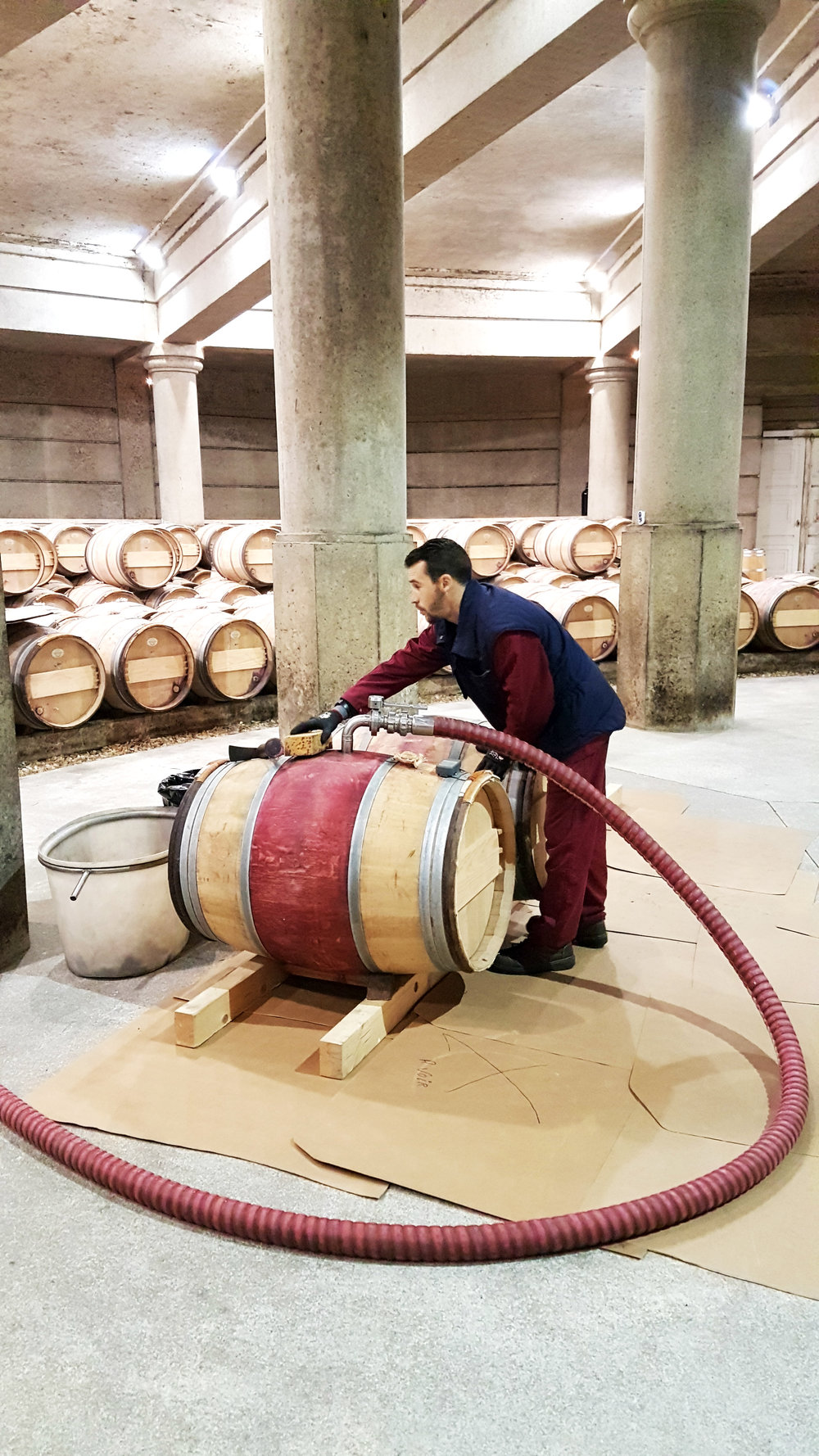 red wine making.jpg