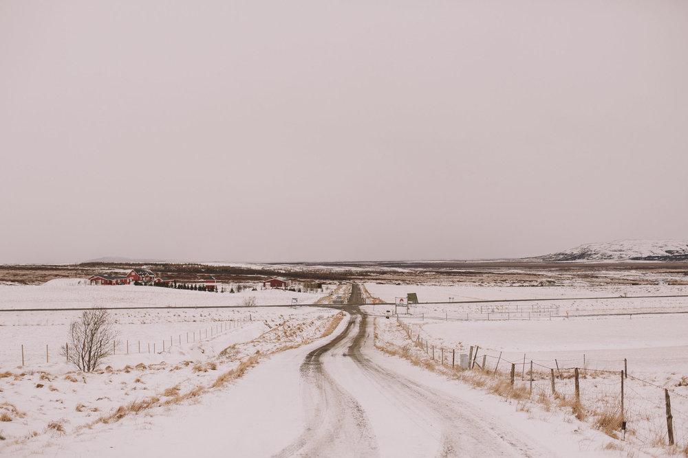 Road-trip-Islande-Iceland-Voyage-Travel-Portrait-Jérémy-Boyer-Geysir-1.jpg