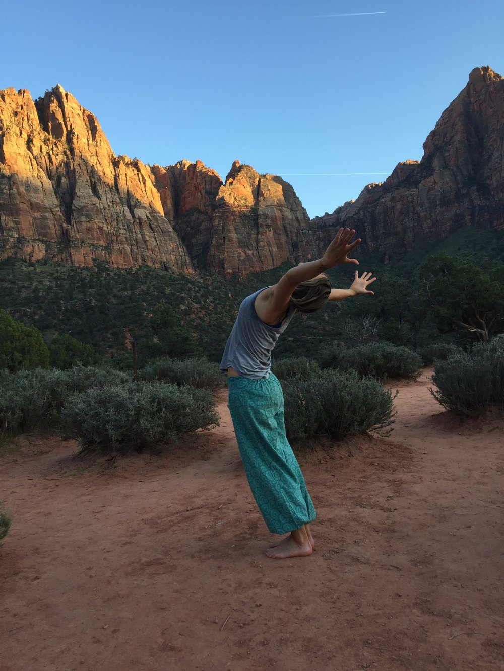 Integrative Yoga~ Integrative Yoga - Enhance the quality of all aspects of your visit. Private Yoga experiences can be customized and integrated into your travel plans and activities including hiking, canyoneering, private, daily classes in the field or at your lodging. Please contact us us for more details