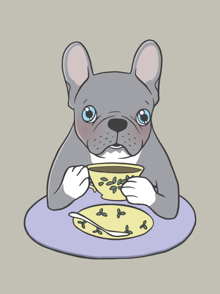 High Teas with Sweet and Cute Blue Brindle French Bulldog