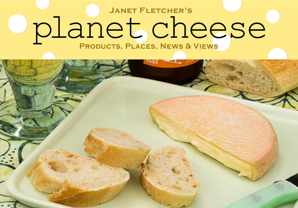 Janet slumping cheese.png