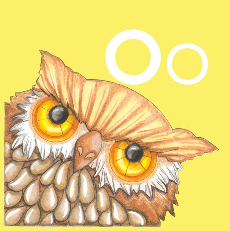 owlsyellow