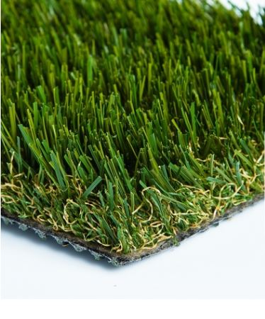 Diamond  Pro Fescue- Turf.JPG