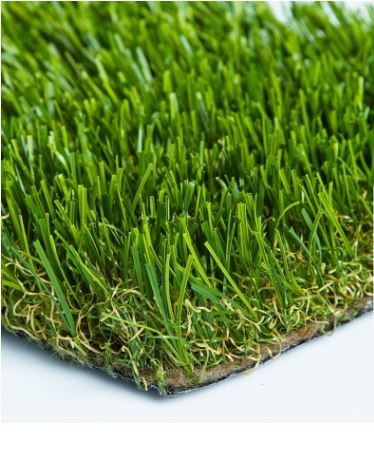 Diamond Light Spring - Turf.JPG