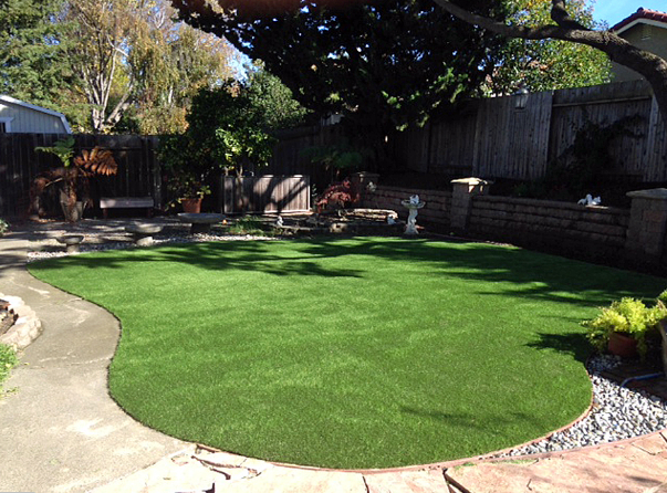 RC-Artificial-Grass-Encino.PNG