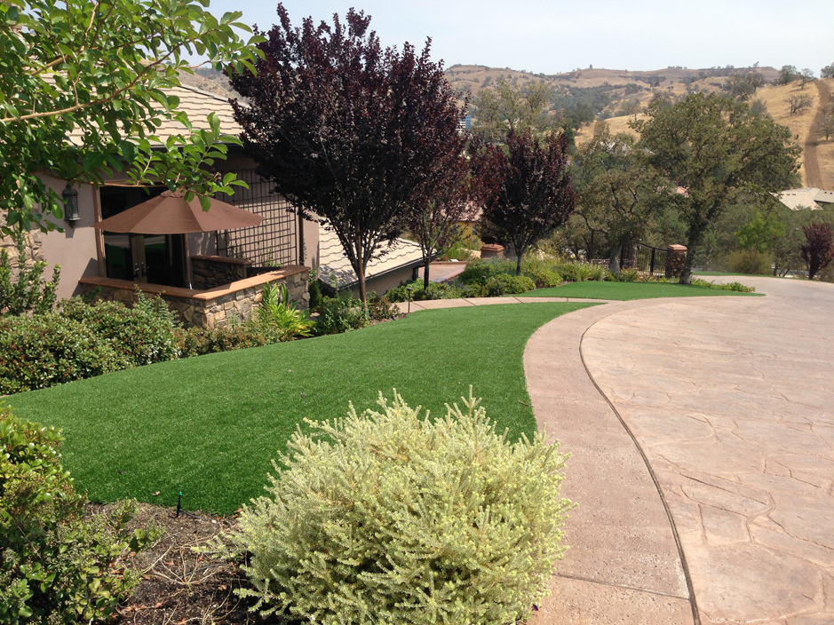 Artificial_Grass_Sherman_Oaks.jpg