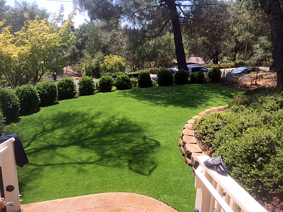 Artificial_Grass_Westwood.jpg