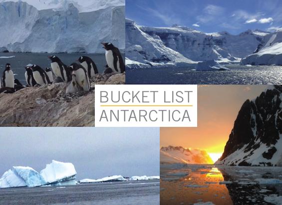 cadence-antarctica-cruise