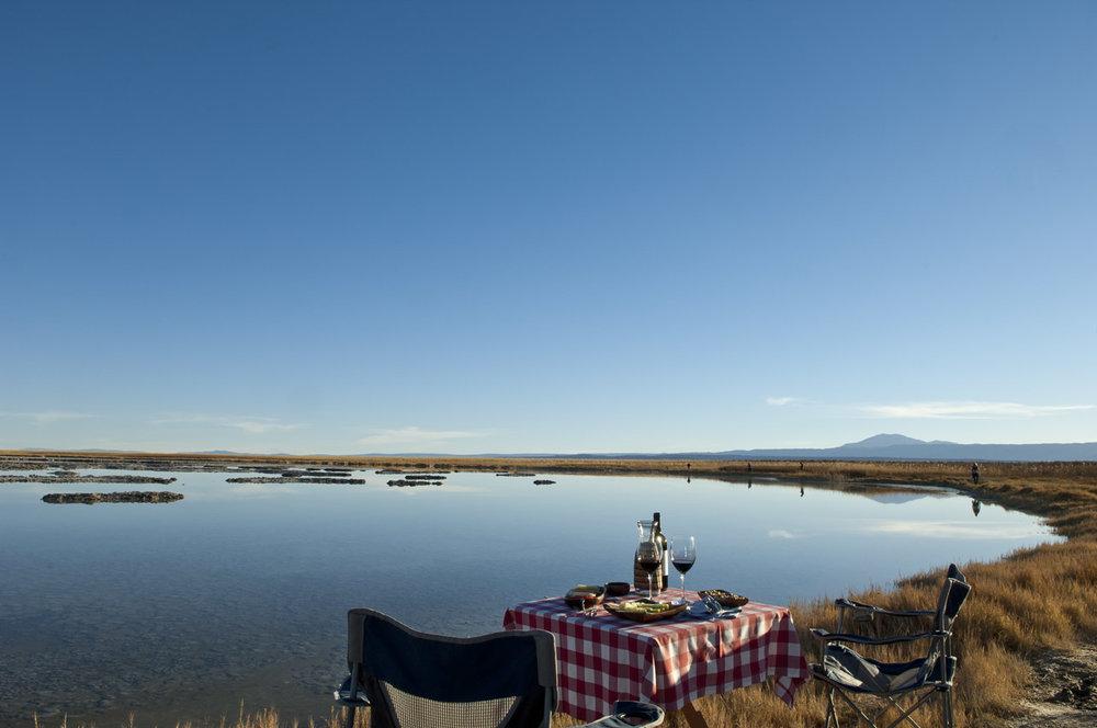 Awasi Atacama (3).jpg