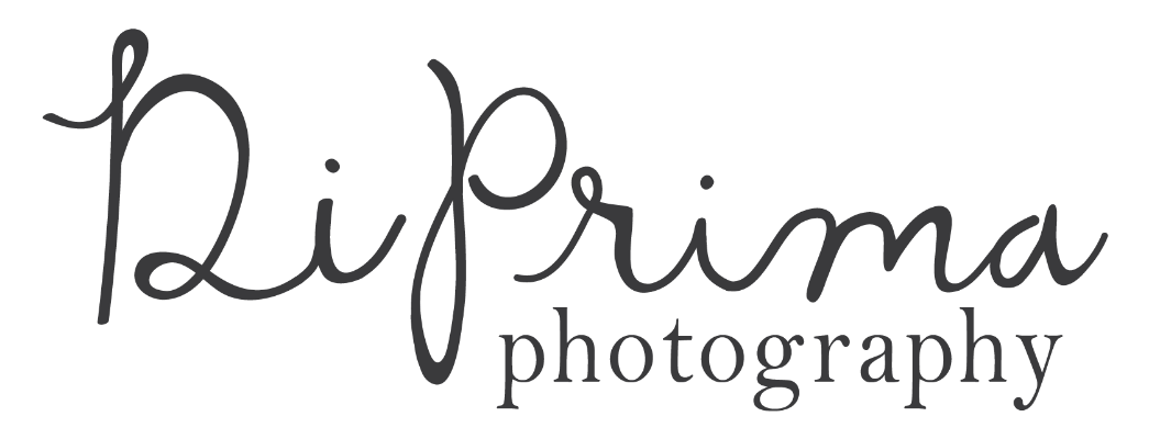 North Carolina Wedding Photographer | DiPrima Photography