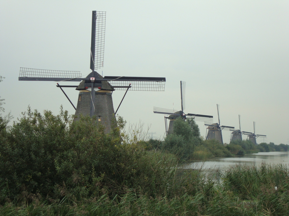 Holland (2011) and more of my story