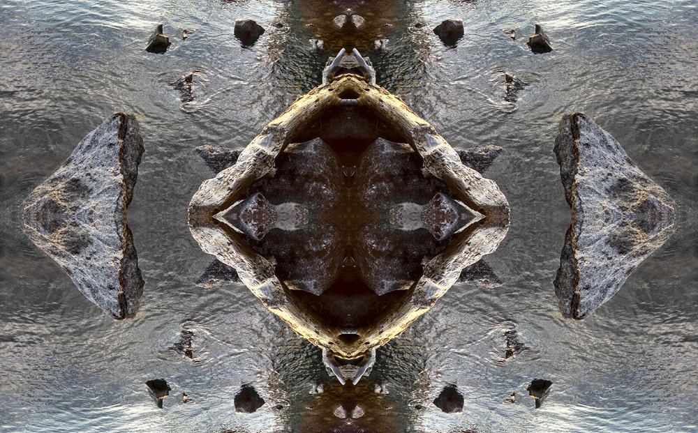 driftwood web.jpg