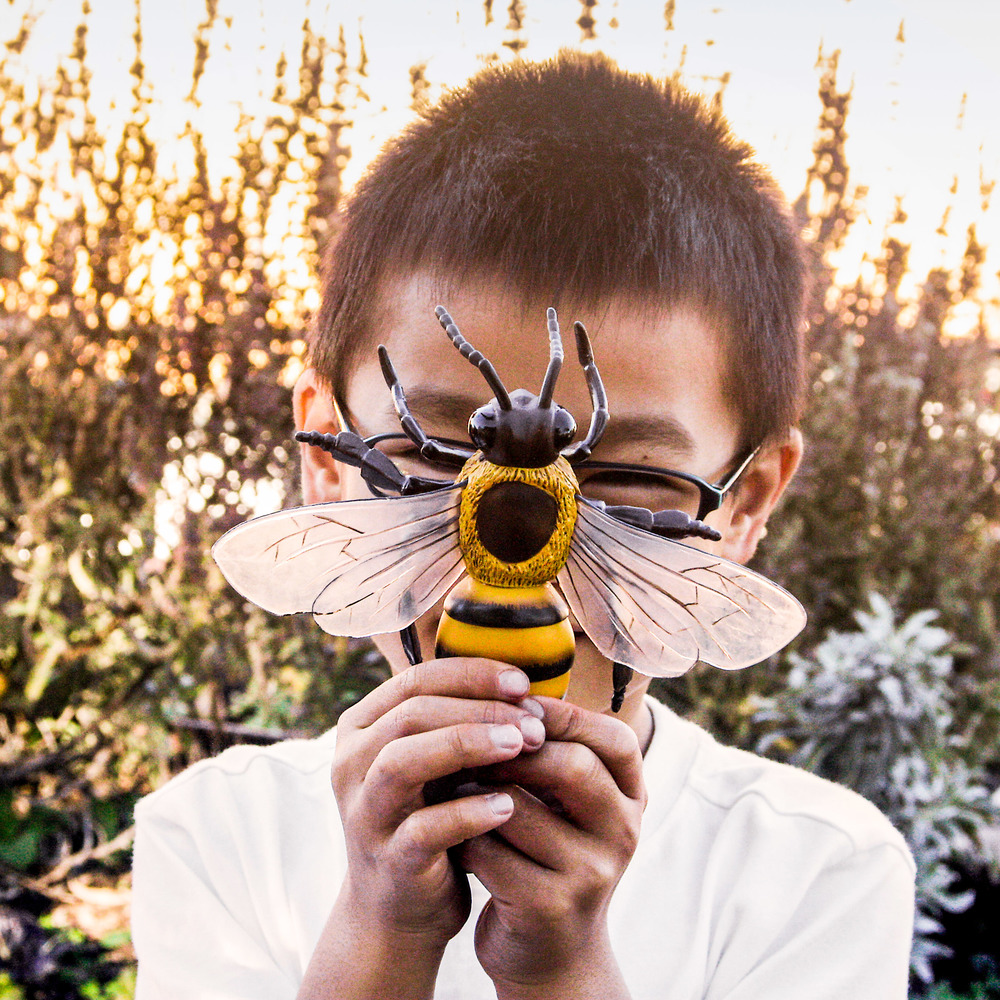 Planet Bee Education.jpg