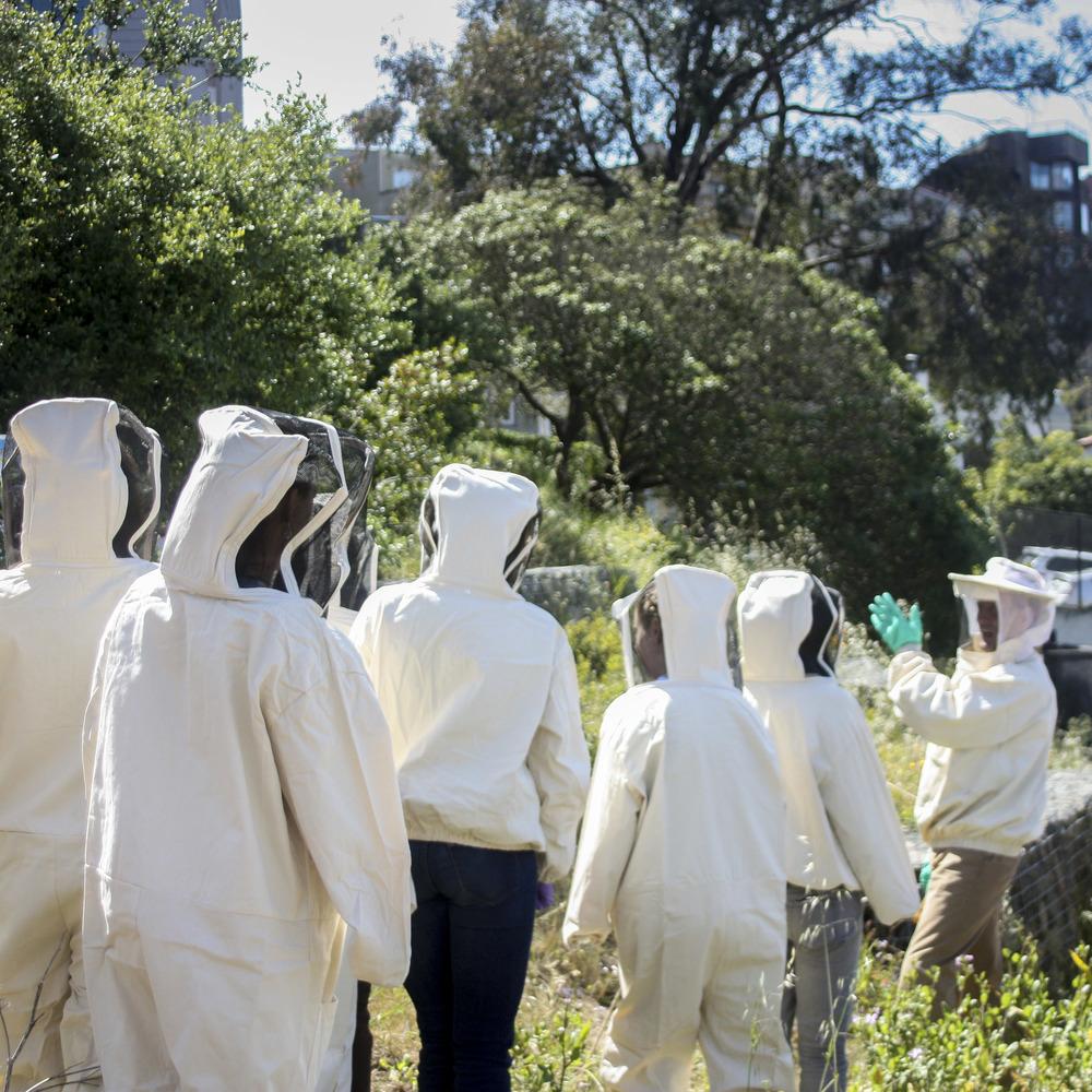 Planet Bee Backyard Beekeeping Workshop.jpg