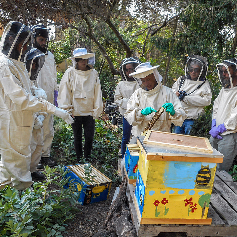 Planet Bee Workshop _Photo Courtesy of Planet Bee Foundation 2015..png