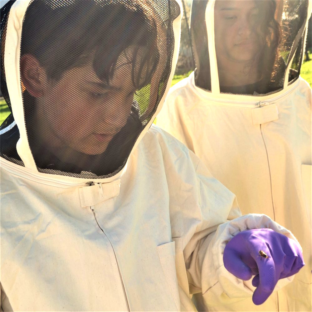 Planet Bee.student examines a bee.2016.jpg