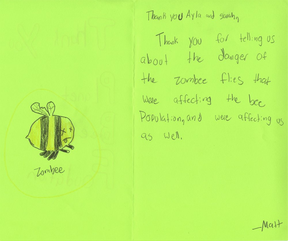 Planet Bee Foundation ZomBee