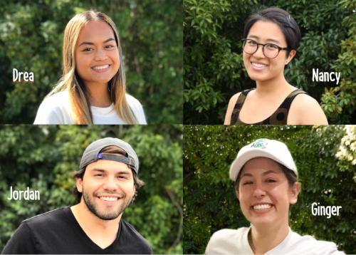 Fall 2017 interns