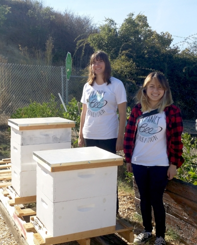 Planet Bee educators at Homeward Bound of Marin Beehives sponsored by EcoBee_photo courtesy of Planet Bee Foundation_2106.jpg