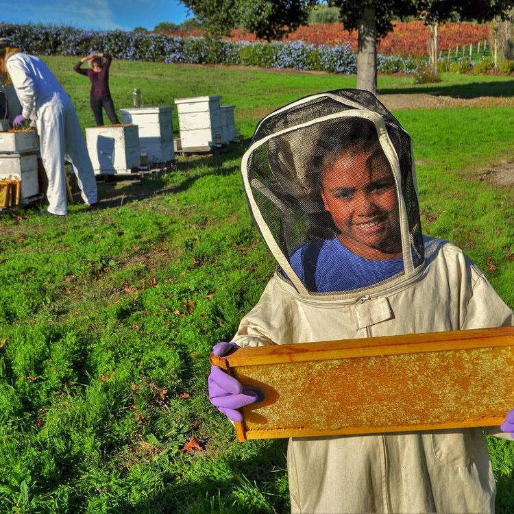 Planet+Bee_Estates_AdoptaHive-2.jpg