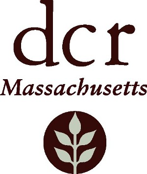 dcr-logo_scaled.jpg
