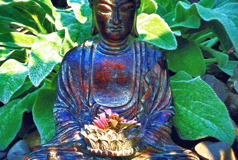 Archives_BuddhaGarden_Thumbnail_2.jpg