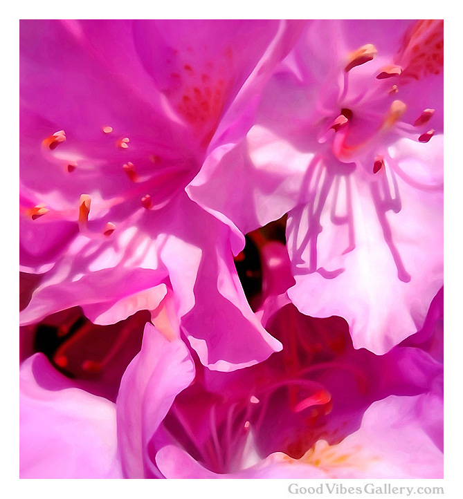 flowers-abstract-paintings-expressionism-fine-art-zen-tao-art-nature-contemporary-painter-georgia-o'keeffe-zen-tao-art-till-death-do-us-part-good-vibes-gallery