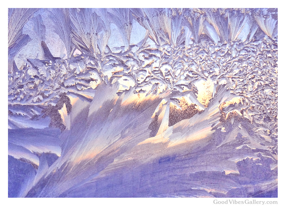 ice-crystals-frost-winter-photos-nature-photography-zen-tao-art-early-morning-ice-cathedral-ceilings-good-vibes-gallery
