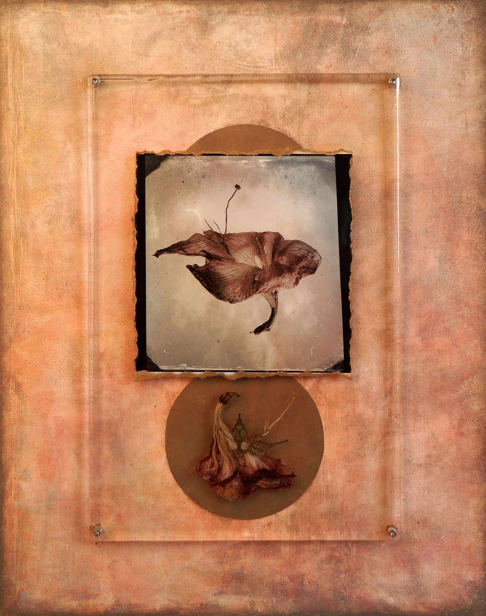 """Remembering"" Photography by Richard J. Murphy and Mixed Media by Tami Phelps"