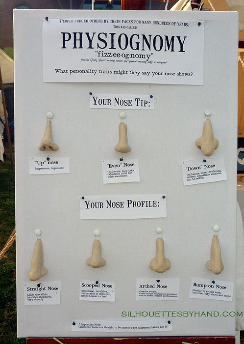 "The ""Physiognomy noses"" display was handmade by Lauren Muney to help visitors spot their own nose traits."