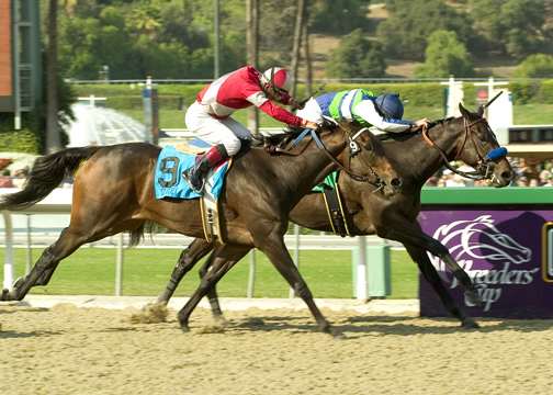 Cry and Catch Me  winning the 2007  G1 Oak Leaf Stakes.   Photo taken by Benoit Photography
