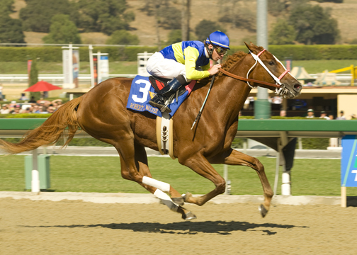 Runforthemoneybaby  winning the  California Cup Juvenile Fillies Stake .  Photo taken by Benoit Photography.