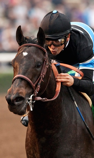 Shared Belief                                                                Photo taken by Benoit Photography.