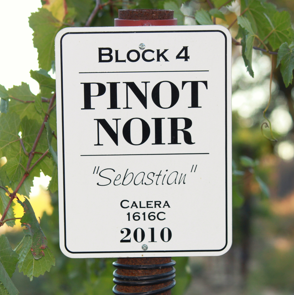 PinotNoirSign_GantzFamilyVineyards.jpg