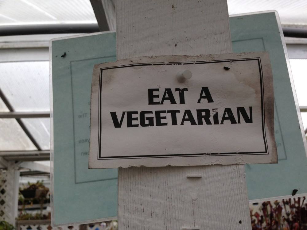 EatAVegetarian_CaliforniaCarnivores