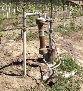 Ol' Bessy, the 40-year-old ag well, was clogging the irrigation system with sand when our vines needed water the most.