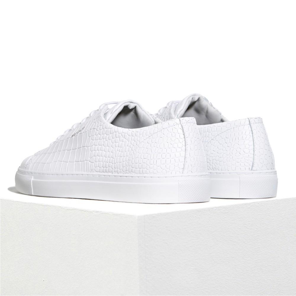white-4_2.jpg
